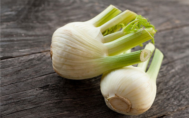 fennel-bulbs_3278929b
